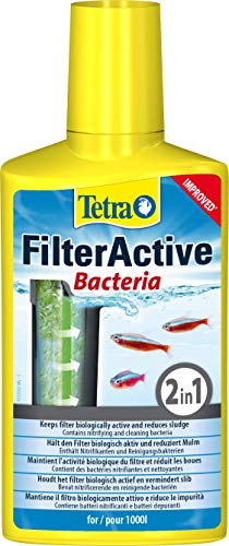 Zoom IMG-2 tetra filteractive 250 ml