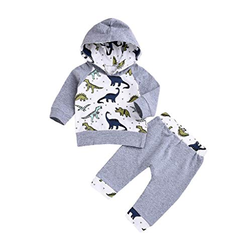 feiXIANG Baby Set Neugeborene Tops Hosen Karikatur Dinosaurier Drucken Hoodie Pullover mit Kapuze Bekleidungsset (Grau,70)