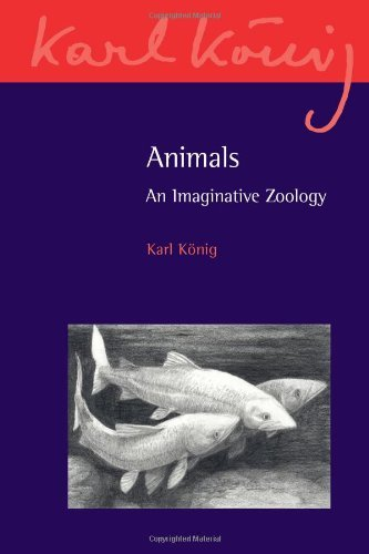 animals-an-imaginative-zoology-karl-konig-archive-by-karl-knig-2013-07-01