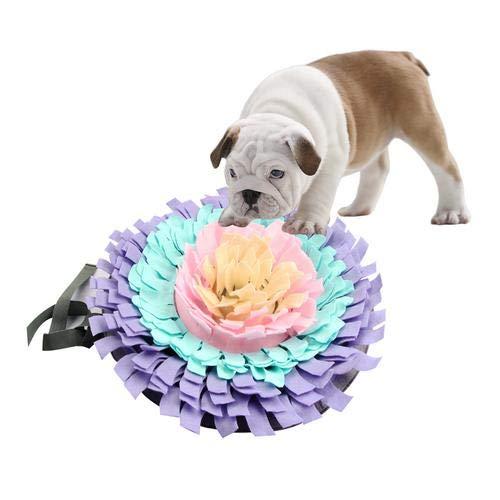 FUXINDP 6 Farben Süße Engel Haustier Hund Leinen Welpen Geschirr Kragen Blei Gurt Gürtel Für Kleine Hunde Katzen Designer Flügel Verstellbare Hundeleine -