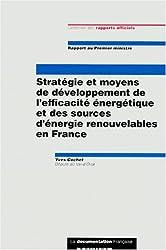 Strategie et moyens de developpement de l'efficacite énergétique