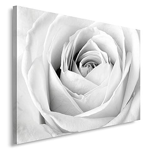 Feeby Frames, Tableau seul panneau , Tableau imprimé xxl, Tableau imprimé sur toile, Tableau deco, Canvas 50x70 cm, ROSE