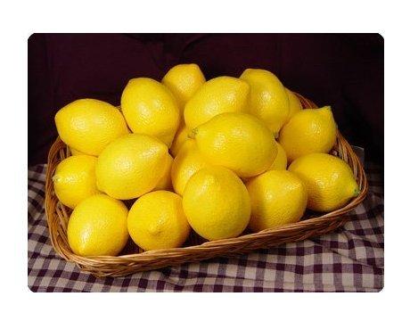f-eshion-comercio-exterior-de-gama-alta-de-simulacion-de-frutas-yellow-4pcs