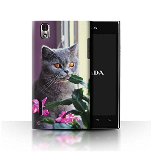 Stuff4® Hülle/Case für LG Prada 3.0/K2/P940 / Britisches Blau/Kurzes Haar Muster Katze/Katzenrassen Kollektion -