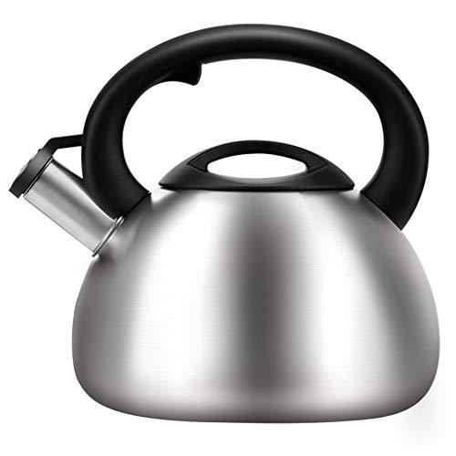 304 en acier inoxydable bouilloire gaz maison sifflet fond plat bouilloire induction cuisinière 3.5L WHLONG