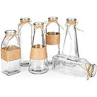 Jarrones de cristal de OPPS en diferentes formas únicas, diseño creativo de cuerda, juego de 6