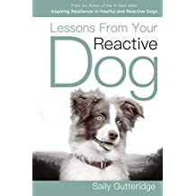 Lessons From Your Reactive Dog