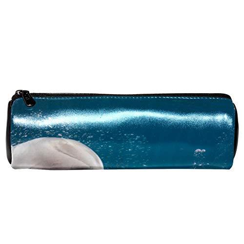 EZIOLY Federmäppchen mit Delfin-Unterwasser-Motiv und Meerjungfrau, Leder, für Schule, Arbeit, Büro