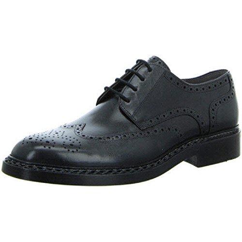 Lloyd Shoes GmbH Wheeler 00 Schwarz