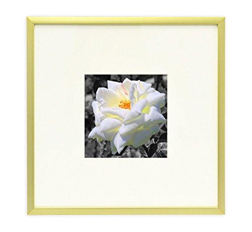 frametory, 20,3x 20,3cm Instagram quadratisch Aluminium gold Metall Bilderrahmen für 4x 4Bild mit elfenbeinfarbenem Farbe Matte-Staffelei Ständer & Echtglas