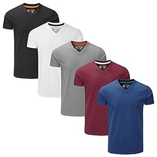 Charles Wilson 5er Packung Einfarbige T-Shirts mit V-Ausschnitt (Large, Essentials Type 22)