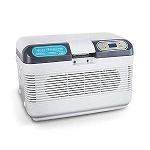 Unbekannt 2-8 Grad Insulin-Gefrierschrank Thermostat Temperaturregelung Mini-Kühlschrank Kleine Tragbare Hause Kühlbox und Auto-Insulin-Box (41X28.5X28.5Cm (16.14X11.22X11.22Inch)