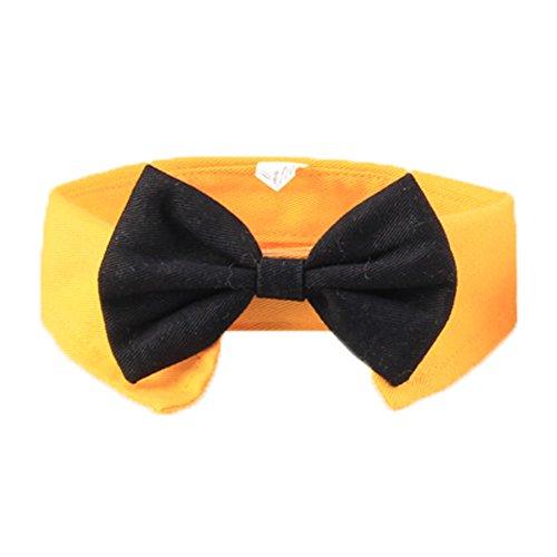 zuckerti-schick-cane-gatto-animale-domestico-pet-strisce-collo-fiocco-cravatta-papillon-bow-tie-coll