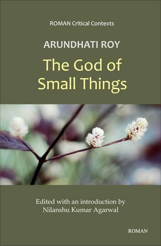 Arundhati Roy's 'The God of Small Things' (Roman Critical Context Series)
