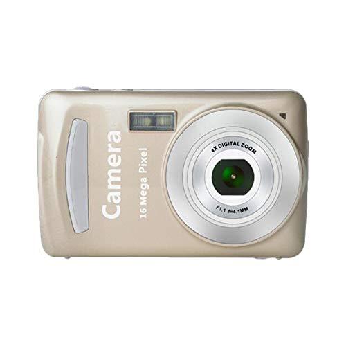 Tragbares Mini-2,4-Zoll-TFT-LCD-Display Hochauflösende Aufnahmekamera Taschenkamera Automatisches klares Aufnehmen - Gold 14-zoll-tft-lcd-display