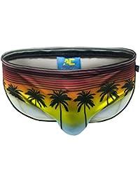Andrew Christian Sunset Palms Bikini