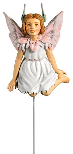 Fiebiger Floristik Flower Fairy Fee in Box Reiherschnabel 6cm