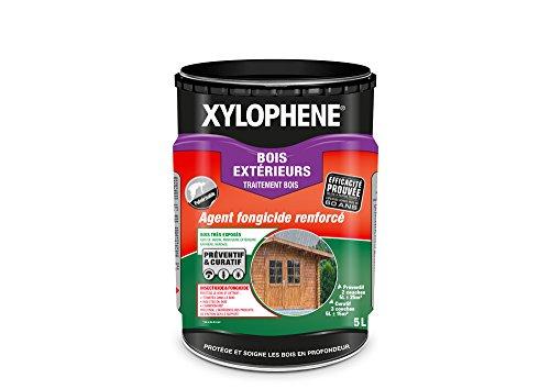XYLOPHÈNE - Traitement Bois Extérieurs - Anti Insectes - Spécial Bois Très Exposés en Extérieur - Incolore - 5L -