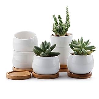 ComSaf Planta Maceta de Suculento con Bandeja de bambú 6CM Cerámico Mini Tamaño Paquete de 3, Cactus Maceteros de Ventana Cajas Decoración para Mesa de Comedor Regalo para Cumpleaños Boda Navidad