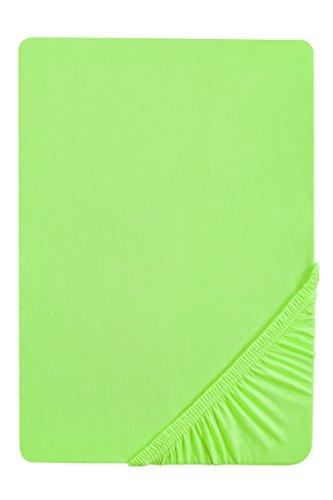 biberna 77155 Jersey-Stretch Spannbetttuch, nach Öko-Tex Standard 100, ca. 90 x 190 cm bis 100 x 200 cm, hellgrün