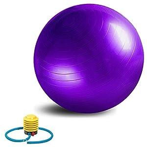 Balle Professionnel de Yoga 65cm IRROT Balle d'exercice épaisse avec une Pompe GRATUITE Balle de Balance et Stabilité pour exercice,Anti-déflagrant Haute de Qualité (pourpre)