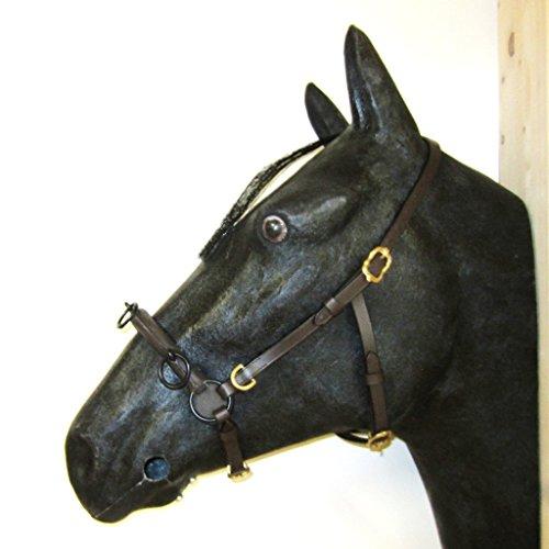 PS Pferdeartikel Französischer Kappzaum Cavecon/Cavesson mit D-Ringen SOFT - Gr. FULL Farbe Braun mit goldenem Beschlag