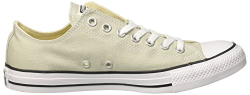Converse Ctas Ox, Sneakers Homme Gris (Light Surplus)