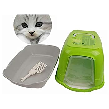 Wcx Rotin Toilette Chat,Encapuchonné Litière pour Chats Toilette Entièrement Clos Couche Double Toilette pour Chat Bassin (Couleur : Green)