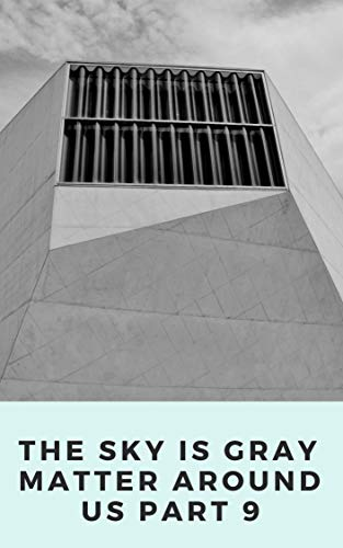 THE SKY IS GRAY MATTER AROUND US PART 9 (Dutch Edition) por DESIR  JOSHON