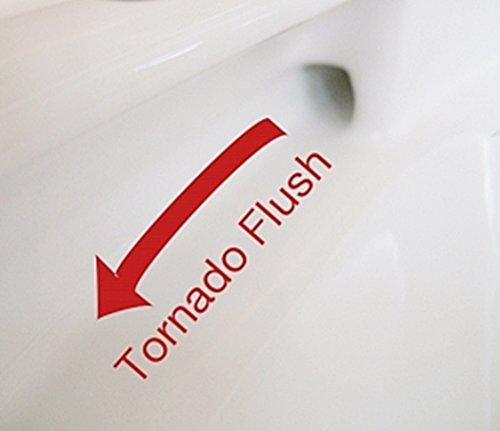 TOTO Wand WC CW762Y ohne Sitz Tiefspüler mit Tornado-Flush spülrandlos - 3