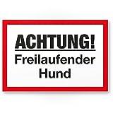 Achtung Freilaufender Hund - Kunststoff Schild (30 x 20 cm), Hinweisschild - Hundeschild das Gartentor, Einfahrtstor/die Haustür, Türschild Abschreckung, Warnschild Einbruchschutz