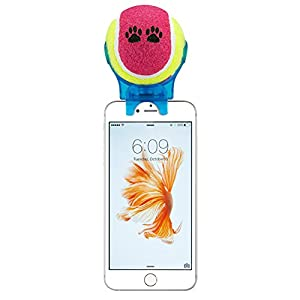 e-plg pour Smartphone Fixation Selfie bâton selfie Stick Pet-Pet-Pet Entraînement d'Agility-Jouet pour Animaux (couleur?: bleu Selfie bâton)