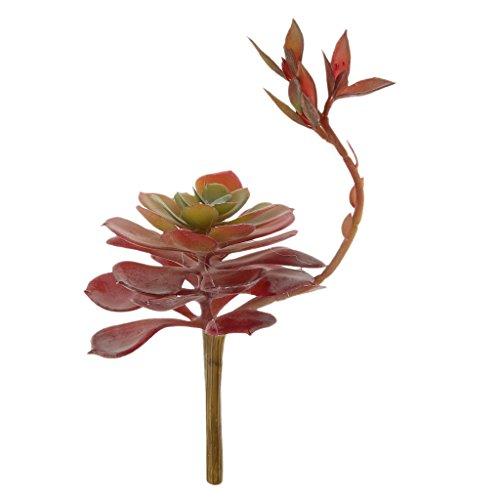 Fiore Di Loto Artificiale Erba Succulenta Deserto Disposizione Pianta Rosso