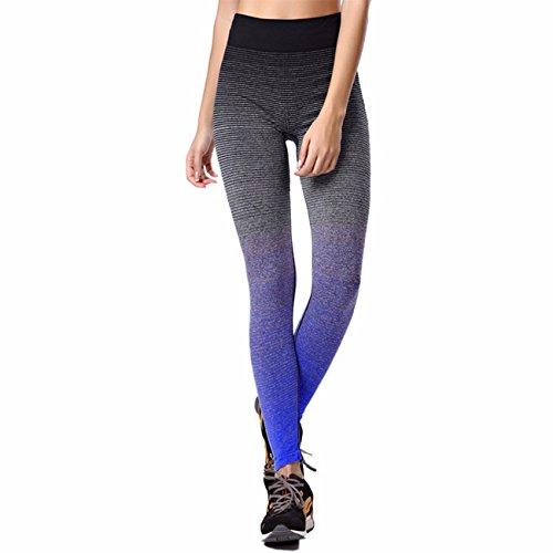 Pantaloni da donna Gradient Stripes yoga allenamento snellente leggings vita alta jogging sport collant Hyacinthine
