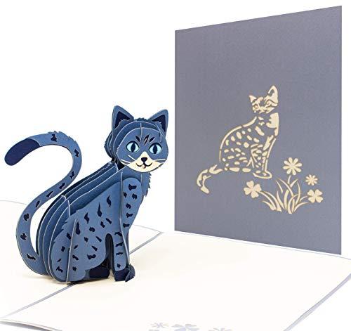Pop Up 3D Katze,Geburtstagskarte, Glückwunschkarte, Freundschaftskarte, Geschenkkarte, Überraschungskarte mit einer großen grauen Katze mit großen blauen Augen