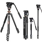 Best Treppiedi video - Kit monopiede treppiede video professionale, Cayer AF2451 Cavalletto Review