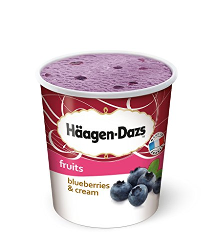 haagen-dazs-fruits-blueberries-cream-eiscreme-speiseeis-eissorbet-500ml