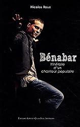 Bénabar, itinéraire d'un chanteur populaire