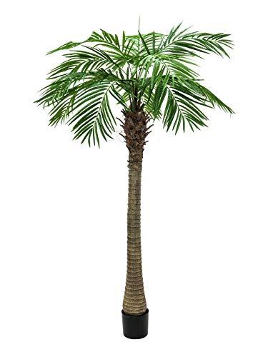 artplants Set 'Kunststoff Phönixpalme + Gratis UV Schutz Spray' – Künstliche Dattelpalme Carter, grün, 150 cm