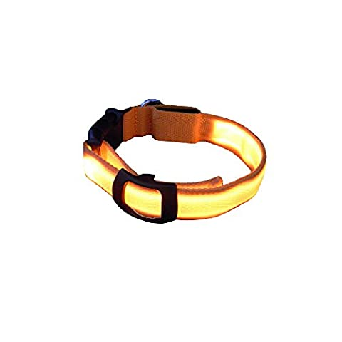 Sijueam Led Pet Dog Collar USB Rechargeable Night Safety Flashing Light up Necklace Loop Puppy Illuminating Collar with Adjustable Buckle,XS size in Orange