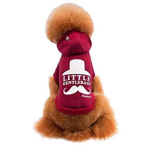 Bart Kostüm Hund (Yuncai Freizeit Bart Drucken Hoodie für Hunde Baumwolle Weich Warm Haustier Mantel Pullover Weinrot)