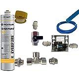 Everpure Kit Installazione Sottolavello con Testata Ql2b e Filtro 4C