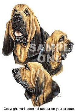 Einfach Tees Bloodhound Hund Drei Bilder Erwachsene Long Sleeve Baseball T-Shirt Mehrfarbig - White / Navy