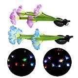 Xshuai Solar Power Flower LED Licht Garten Garten Rasen Landschaft Lampe 2 stücke (C)