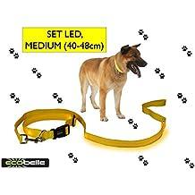 ECOBELLE® set Collar de perro + Correa de perro luminoso LED, Alta Visibilidad y Securidad por la noche, 3 Modos de luz, USB Recargable (2 cables USB incluidos), color AMARILLO. Tamaño de correa 1.20m, Tamaño de collar MEDIO 40-48cm (regulable)