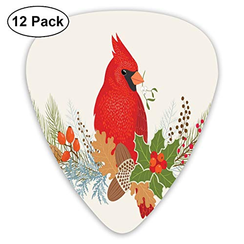 Celluloid Guitar Picks - 12 Pack,Abstract Art Colorful Designs,Floral Bouquet And Bird Ornamental Christmas Acorns Pine Cones And Holly Berries,For Bass Electric & Acoustic Guitars.