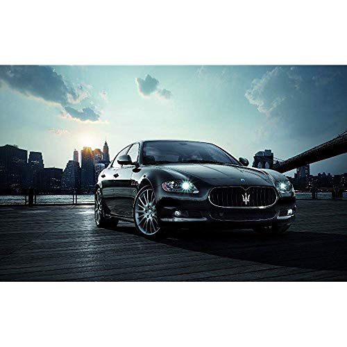 BOWGG Fighting Shop Famous Nice Car Custom Best Stylish Classical Home Decor Fashionable Mondern Poster Size (50x76cm)