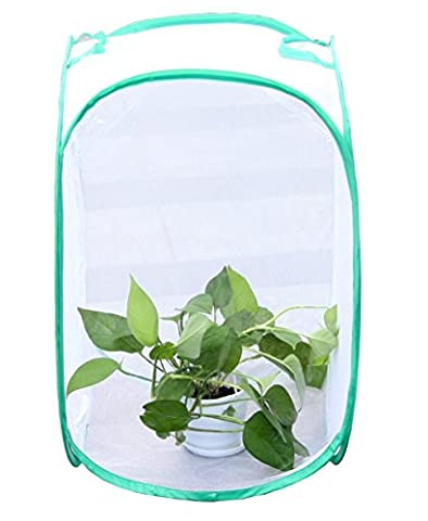 1 Pack Pflanze Gewächshaus transparent Wasserdicht Anbau Raum Anti – Mosquito Box Pet Schmetterling (Masse 60 Strawberry)