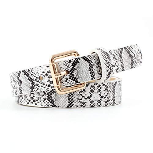 GBDDD Patrón De Serpiente De Moda Cinturones para Las Mujeres De Metal Hebilla Larga del Cinturón del Vestido De Las Señoras Cinturones Decorativos Femeninos De Cuero De Imitación Correas De Cintura
