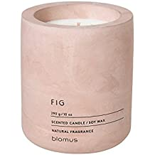 Fraga Large Scented Candle, Fig